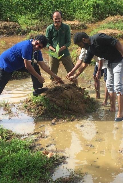 Environment day Awareness