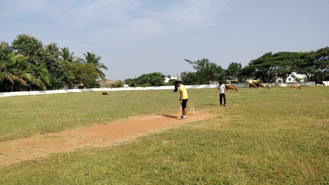 Cricket Fellowship