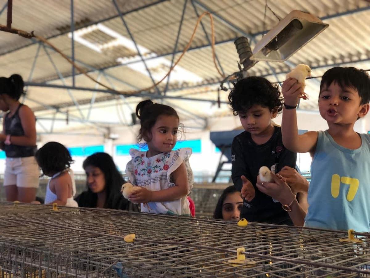 Poultry Farm visit