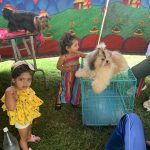 Twinkler's at Dog Show